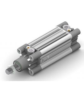 1390.100.25.01P - ECOLIGHT-Zylinder